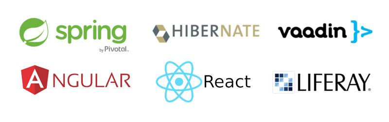 Špecializujeme sa na Spring Framework, Vaadin, HTML5, Hibernate, Liferay portál